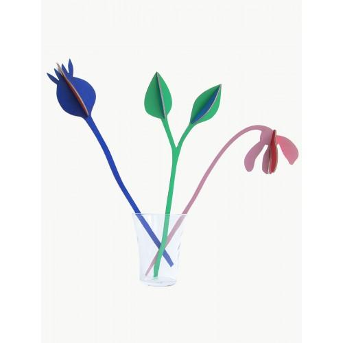 Bouquets mis en scène (Studio ROOF)